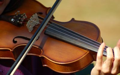 Leisure Violin Lessons